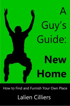 A Guys Guide Own Home_Lalien Cilliers_coverb